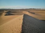 alex Alexs Alex's Cycle Sand Dune in the Sahara Desert, Morocco