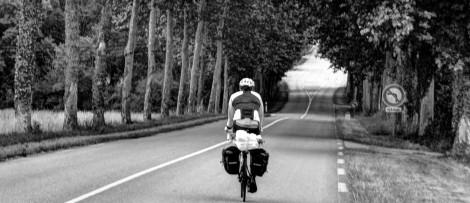 alex Alexs Alex's Cycle