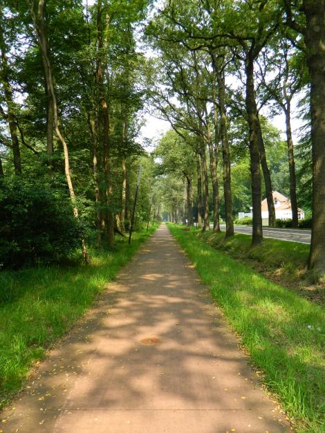 The Netherlands, a cycling heaven