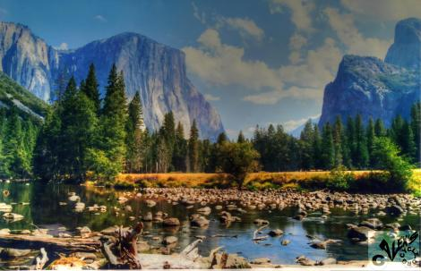 alex Alexs Alex's Cycle Yosemite National Park