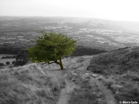 Experimenting using a 'colour splash' feature. This photo was taken hiking in the Peak District.